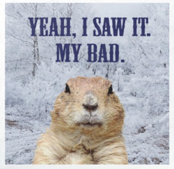 Get your humorous Groundhog Day napkins here...