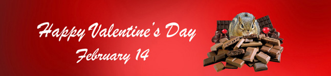 Unique and special Valentine's Day gifts.